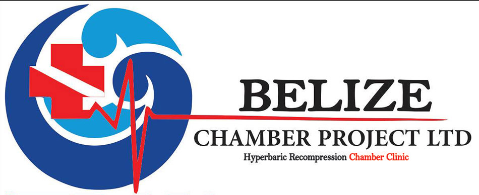 Belize Chamber Project LTD logo